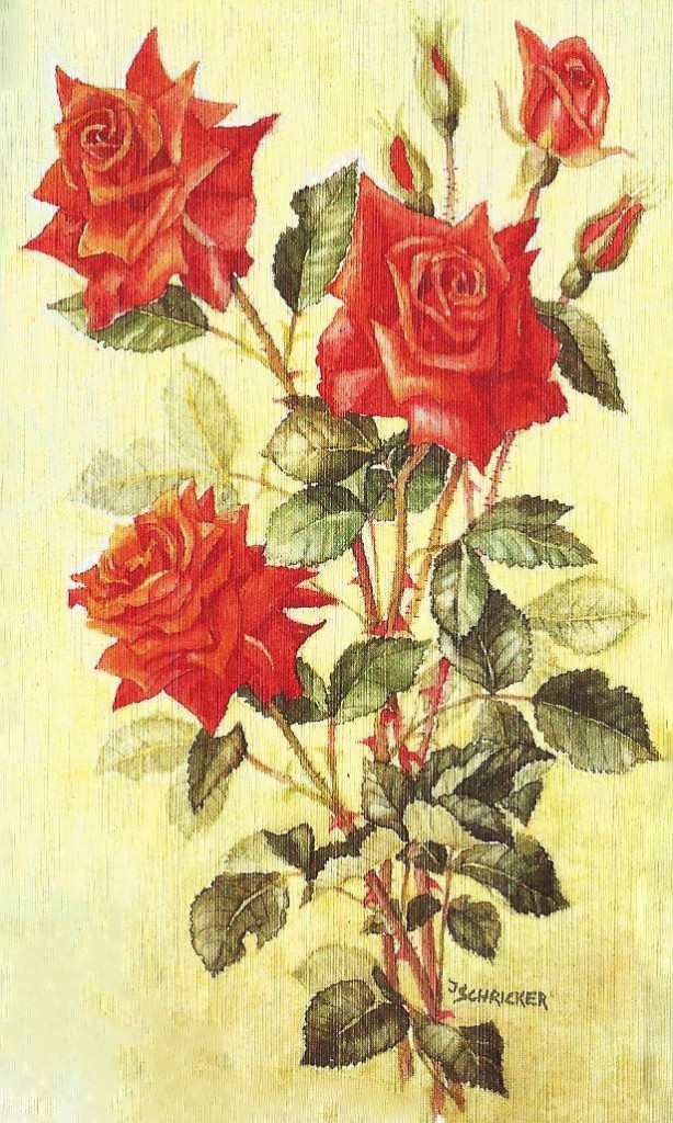 amazon profumo camelia rose laura bacci